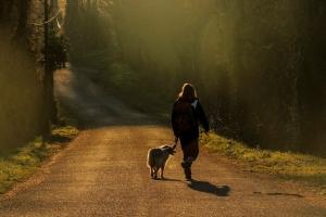 Sur les chemins-Vers la lumière